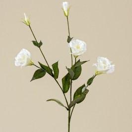 Dekoratívna kvetina Boltze Lisianthus