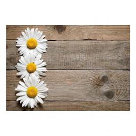 Vinylový koberec Daisy,52×75cm