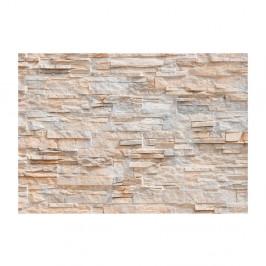 Veľkoformátová tapeta Artgeist Stone Gracefulness, 400×280 cm