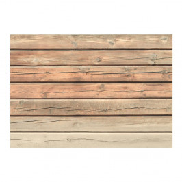 Veľkoformátová tapeta Bimago Old Pine, 300x210cm
