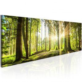 Obraz na plátne Artgeist Daylight 120×40cm