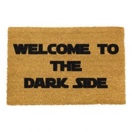 Rohožka Artsy Doormats Welcome to the Darkside, 40x60cm