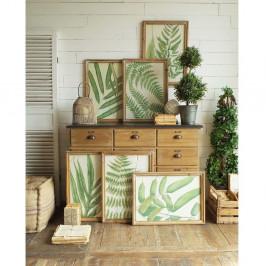 Set 6 obrazov v drevených rámoch Orchidea Milano Botanica Leaves, 65×47 cm