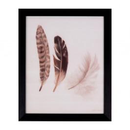Obraz sømcasa Feathers, 25×30 cm