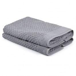 Sada 2 sivých uterákov Beverly Hills Polo Club Mosley, 50×80cm