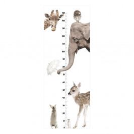 Nástenná samolepka Dekornik I Love Animals