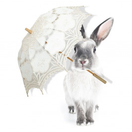 Nástenná samolepka Dekornik Harry Is Singing In The Rain