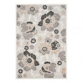Sivý koberec vhodný do exteriéru Safavieh Oxford, 160×231 cm