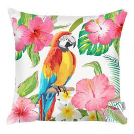Farebná obliečka na vankúš Apolena Flowery Ara, 43×43 cm