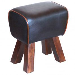 Stolička z masívneho dreva s koženým poťahom Interlink Alaid