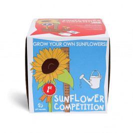 Pestovateľský set Gift Republic Sunflower Competition