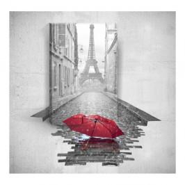 Nástenný 3D obraz Mosticx Red Umbrella In Paris, 40×60 cm
