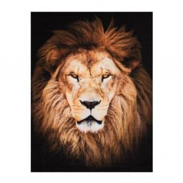 Koberec Hanse Home Lion, 190×140 cm