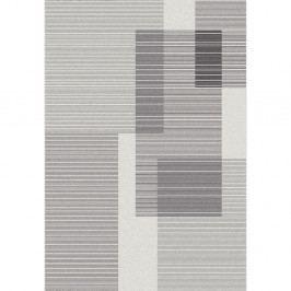 Sivý koberec Universal Niebla, 160x230cm