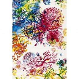 Koberec Universal Tikey Flower, 60×120cm