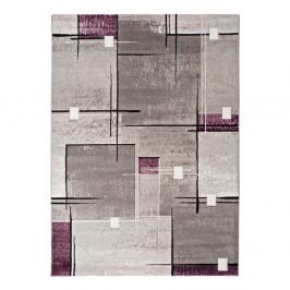 Sivo-fialový koberec Universal Detroit, 160x230cm