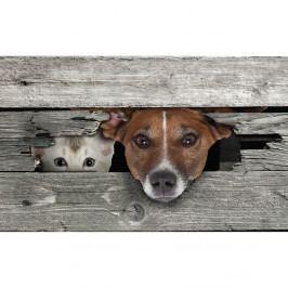 Podložka pod liatinovú rohožku Esschert Design Cat & Dog