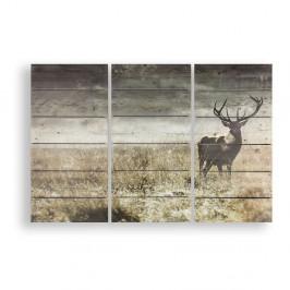 Viacdielny drevený obraz Graham&Brown Highland Stag