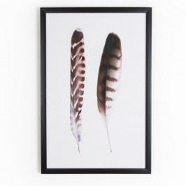 Obraz Graham & Brown Feather Couple, 40 × 60 cm