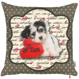Obliečka na vankúš Apolena Puppy, 43 x 43 cm