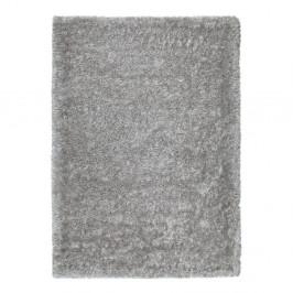 Sivý koberec vhodný aj do exteriéru Universal Aloe Liso, 140 × 200 cm