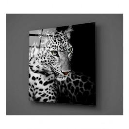Sklenený obraz Insigne Wild Animal, 30 × 30 cm