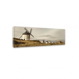 Obraz Styler Canvas Harmony Field, 45×140 cm