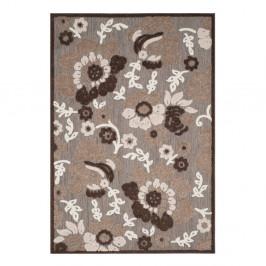 Hnedý koberec vhodný do exteriéru Safavieh Oxford, 160×231 cm