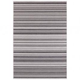 Sivý koberec vhodný aj na von Elle Decor Secret Calais, 200×290 cm