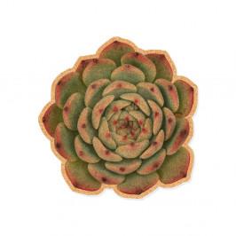 Korková dekoratívna nástenka Really Nice Things Suculenta