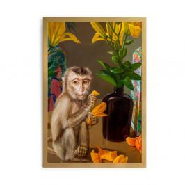 Obraz v ráme Velvet Atelier Mico, 65 x 45 cm