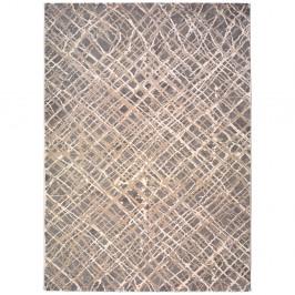 Koberec Universal Seti Pumba, 60×120cm