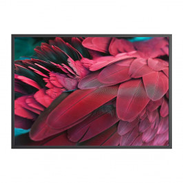 Plagát DecoKing Feathers Red, 100 x 70 cm