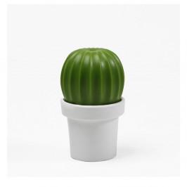 Biely mlynček na korenie Qualy&CO Tasty Cactus