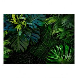 Veľkoformátová tapeta Bimago Dark Jungle, 400 x 280 cm