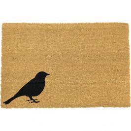 Rohožka z prírodného kokosového vlákna Artsy Doormats Bird, 40 x 60 cm