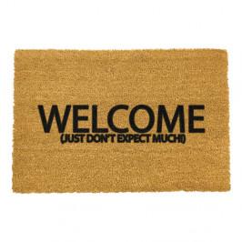 Rohožka z prírodného kokosového vlákna Artsy Doormats Welcome Don't Expect Much, 40 x 60 cm