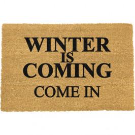 Rohožka z prírodného kokosového vlákna Winter Is Coming, 40 x 60 cm cm