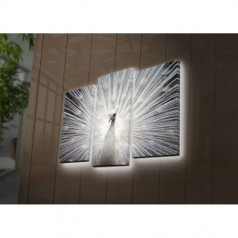 Podsvietený 3-dielny obraz Peacock