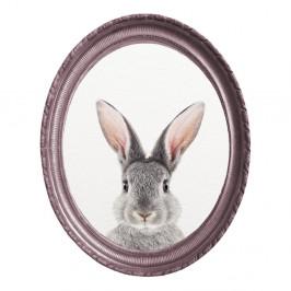 Oválny nástenný obraz Really Nice Things Rabbit, 40 x 50 cm