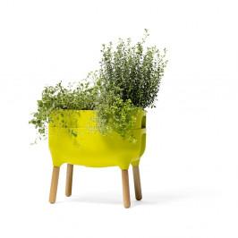 Zelená pestovateľská samozavlažovacia nádoba Plastia Low Urbalive, výška 48 cm