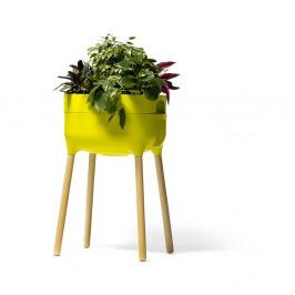 Zelená samozavlažovacia pestovateľská nádoba Plastia High Urbalive, výška 77 cm