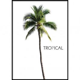 Nástenný plagát v ráme BERMUDA/TROPICAL, 70 x 100 cm