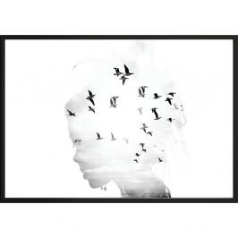 Nástenný plagát v ráme GIRL/SILHOUETTE / BIRDS, 50 x 70 cm