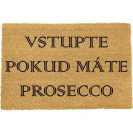 Rohožka z prírodného kokosového vlákna ARTS Doormats Vstúpte, 40 x 60 cm