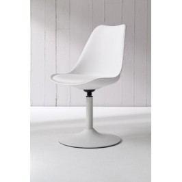 Tequila - Jedálenská stolička (biela, eko koža biela)
