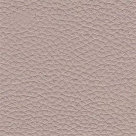 Aniz - Lavica rovná, operadlo (dub bardolino/FS04, sivá)