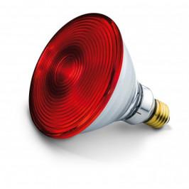 Náhradná žiarovka pre Beurer IL 30, 150W