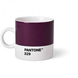 PANTONE Espresso - Aubergine 229, 120 ml