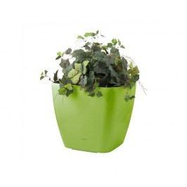 Kvetináč G21 samozavlažovací Cube maxi zelený 45cm zelený